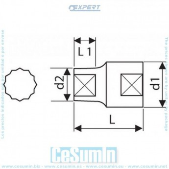 Expert E117295 Vaso 1//4-6 Caras 5,5mm